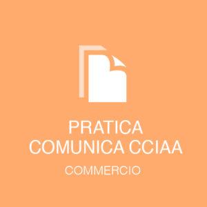pratica_cciaa_commercio