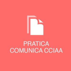 pratica_cciaa_srl